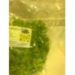 Λολα πράσινη Labidino