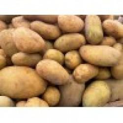 Πατάτες Ολύμπου (Ραψάνη)