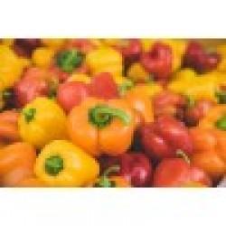 πορτοκαλί πιπεριές Δράμας