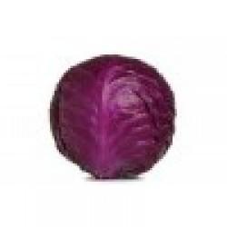 Λάχανο κόκκινο