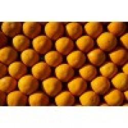 Πορτοκαλια χυμού Λακωνιας