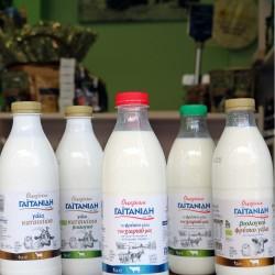 Γαιτανίδης φρέσκο γάλα ελαφρύ