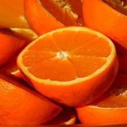 Πορτοκαλια Λακωνιας